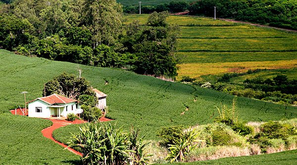 Produtores Devem Declarar O Imposto Territorial Rural Até O Dia 30 De Setembro
