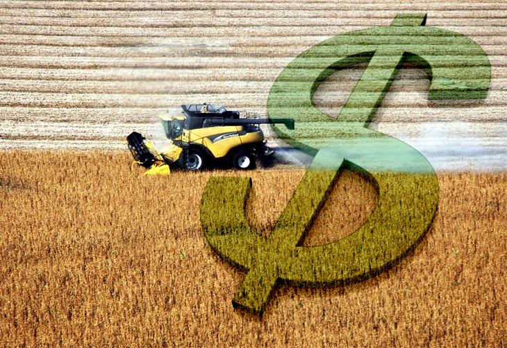 Imposto De Renda: Mudanças E Cuidados Por Parte Do Produtor Rural